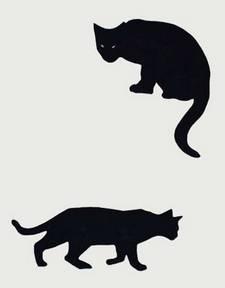 zwei-Katzen