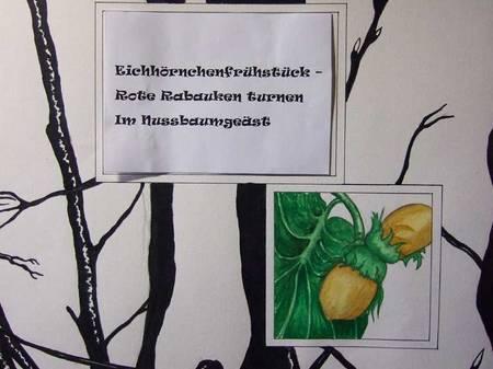 2007 1024Eichhörnchen0092
